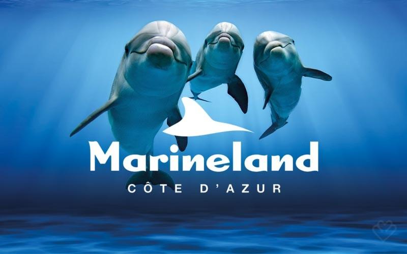 Journée au Marineland d'Antibes